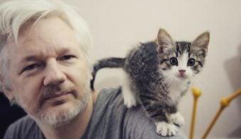 """#PanamaPapers: """"Si el ICIJ publicara de la manera que lo hace Wikileaks, su financiación desaparecería y su cabeza sería cortada"""""""